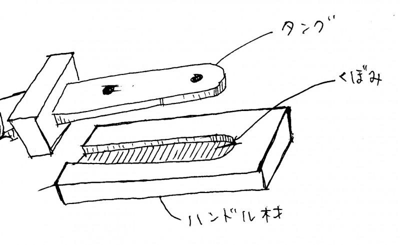 コンシールドタング図