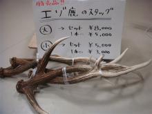 ナイフ小僧のブログ-エゾ鹿